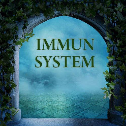 Immunsystem
