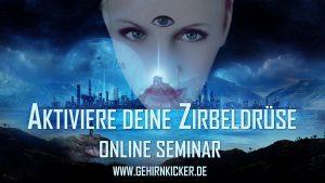 Online Seminar Zirbeldrüse aktivieren